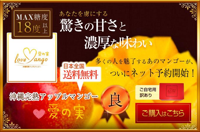 あなたを虜にする驚きの甘さと濃厚な味わい。多くの人を魅了するあのマンゴーがついにネット予約開始!日本全国送料無料沖縄完熟アップルマンゴー愛の実極